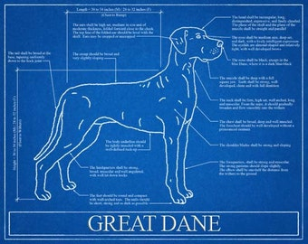 View dog blueprint elevations by wetnosewigglybutts on etsy great dane blueprint elevation great dane art great dane wall art great dane malvernweather Gallery