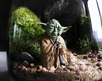 Star Wars Live Terrarium: Choice of Yoda, Ewok, R2D2 or C3PO
