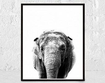 Elephant Print, Elephant Nursery Decor, Elephant Animal Print, Elephant Art, African Animal, black white, Animal Art, Safari, Animal Print