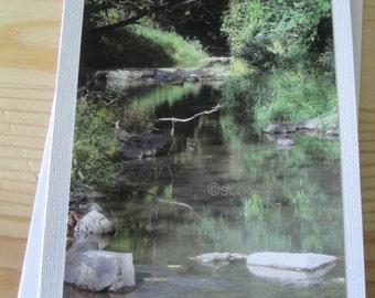 Serene Creek Photography