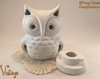 Vintage Owl Unfinished Ceramics White Nightlight night light candle holder Bird Lover Gift autumn decoration fall 1970s seventies hobby