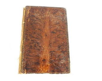 1888 Poetical Works of Jean Ingelow, Shepherd Lady, Illustrated, Antique Book, Antiquarian Collectible, Book of Poetry, Belford Clarke