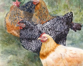 Chickens- Watercolor Giclee Print, Artwork by Laura D'Onofrio