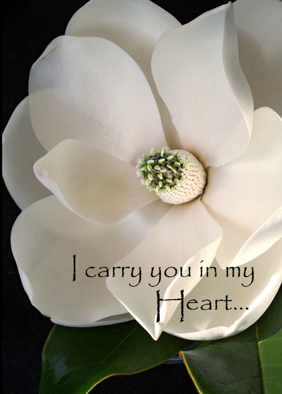 """Magnolia - """"I Carry You in my Heart"""" (5"""" x 7"""" photographic greeting card  - blank inside/with envelope)"""
