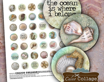 Sea Shell Digital Collage Sheet - Seashell Images - Bottle Cap Images - Printable Collage Sheet - Ocean Printables - 1 inch Circles
