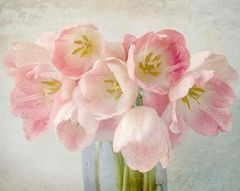 Tulip Art, Bedroom Decor,  Pastel Art, Tulip Still Life, Pink Tulip Print, French Country Decor