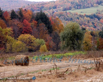 Fall Foliage in Vermont with Hay in the Field