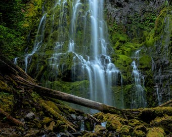 Proxy Falls, Oregon, Cascade mountains, Three Sisters, waterfall, spring, landscape, flowing water, Proxy fall print, waterfall print