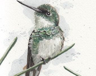 4x6 Original Hummingbird Watercolor