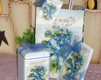 Forget-Me-Not Gift Bag