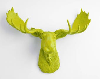 Faux Taxidermy Moose - The Willow -  Resin Moose Head- Moose Resin Mantis Green - Home Decor by White Faux Taxidermy Animal Sculptures