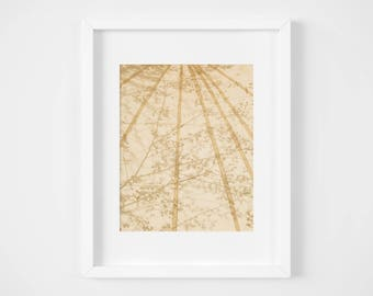 Floral photo print - Trees wall art - Abstract wall decor- Neutral and minimal - Natural art - Framed art Geometric - Framed photo print