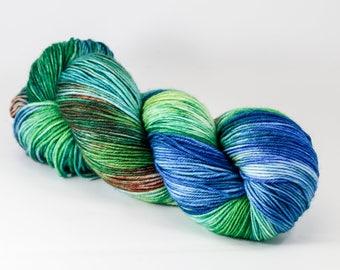Hand Dyed Yarn - FALLEN LAND - 80/20 Australian Merino/Nylon Sock Yarn
