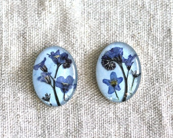 Blue earrings, Blue flowers, Forget-me-not, Blue forgetmenot earrings, Real flower jewelry, Earrings with flowers, Wedding, Birthday, Unique