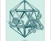 11x14 Icosahedron Octopi ...