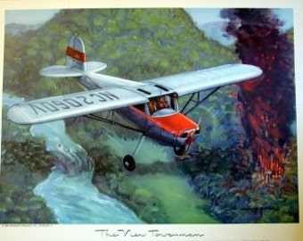 1940s Cessna 140 2 Place Aircraft Forest Fire Plane WoW