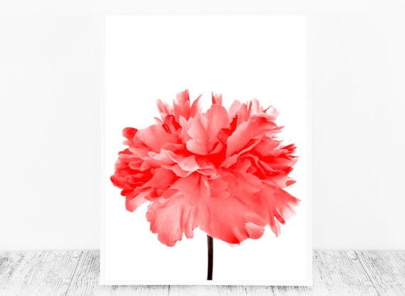 Red Wall Decor Based on A Peony Flower