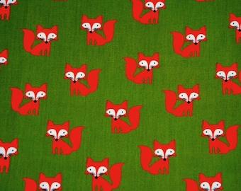 Dapper The Fox - khaki background