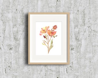 Limited Edition - Gold Rose Geums - Watercolor Fine Art Print - Strong Flower, Art Gift, Give Art