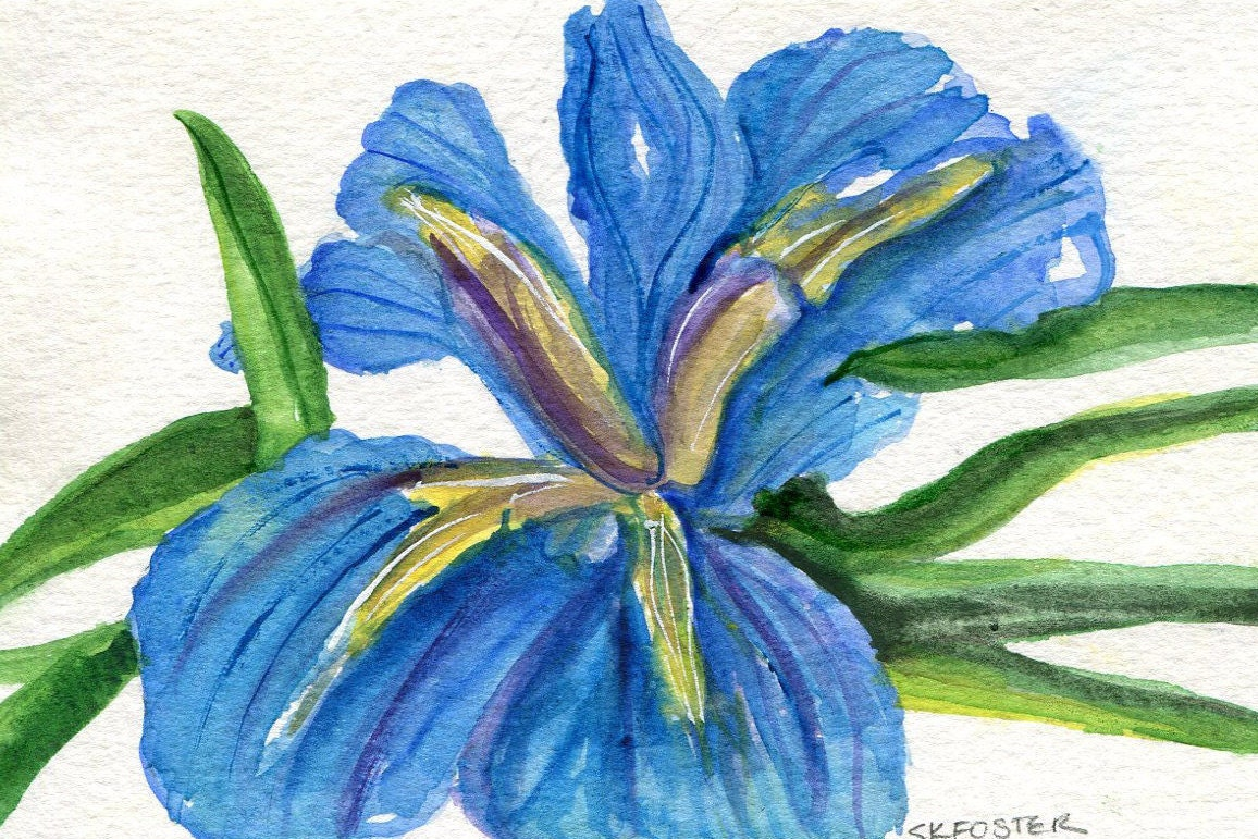 Blue iris watercolors paintings original 4 x 6 flower description blue iris watercolors paintings izmirmasajfo