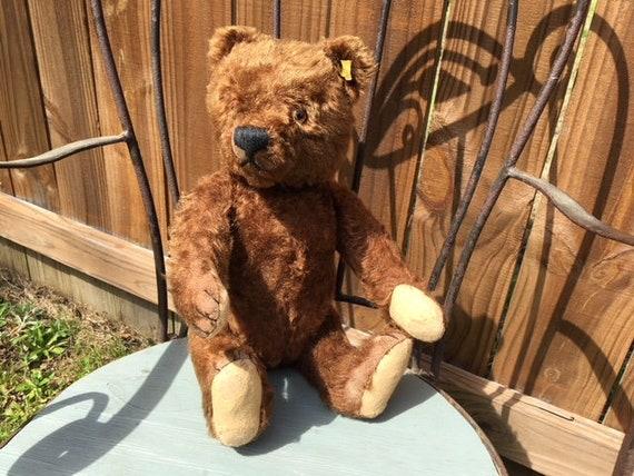 Rare Color Vintage Mohair Steiff Teddy Bear
