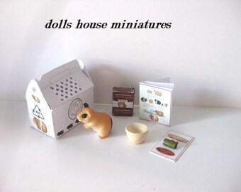 Miniature pet guinea pig