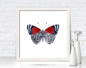 Red Butterfly Painting, Butterfly Print, Original Butterfly Watercolor, Butterfly Greeting Cards, Butterfly Art, 37 Diaethria Clymena