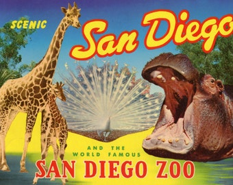 Scenic San Diego and the World Famous San Diego Zoo - 1962 city guide