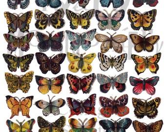 Butterflies Digital Download Collage Sheet