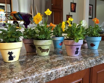 Painted Flower Pots - Kids Party Favors - Seed Planting Party - Flower Pot Favors - Large Events - Set of 50