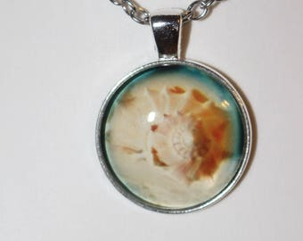 Seashell..Necklace Gift Friend, Aunt, Cousin, Friend, Babysitter, Mom, Dad, Present #2