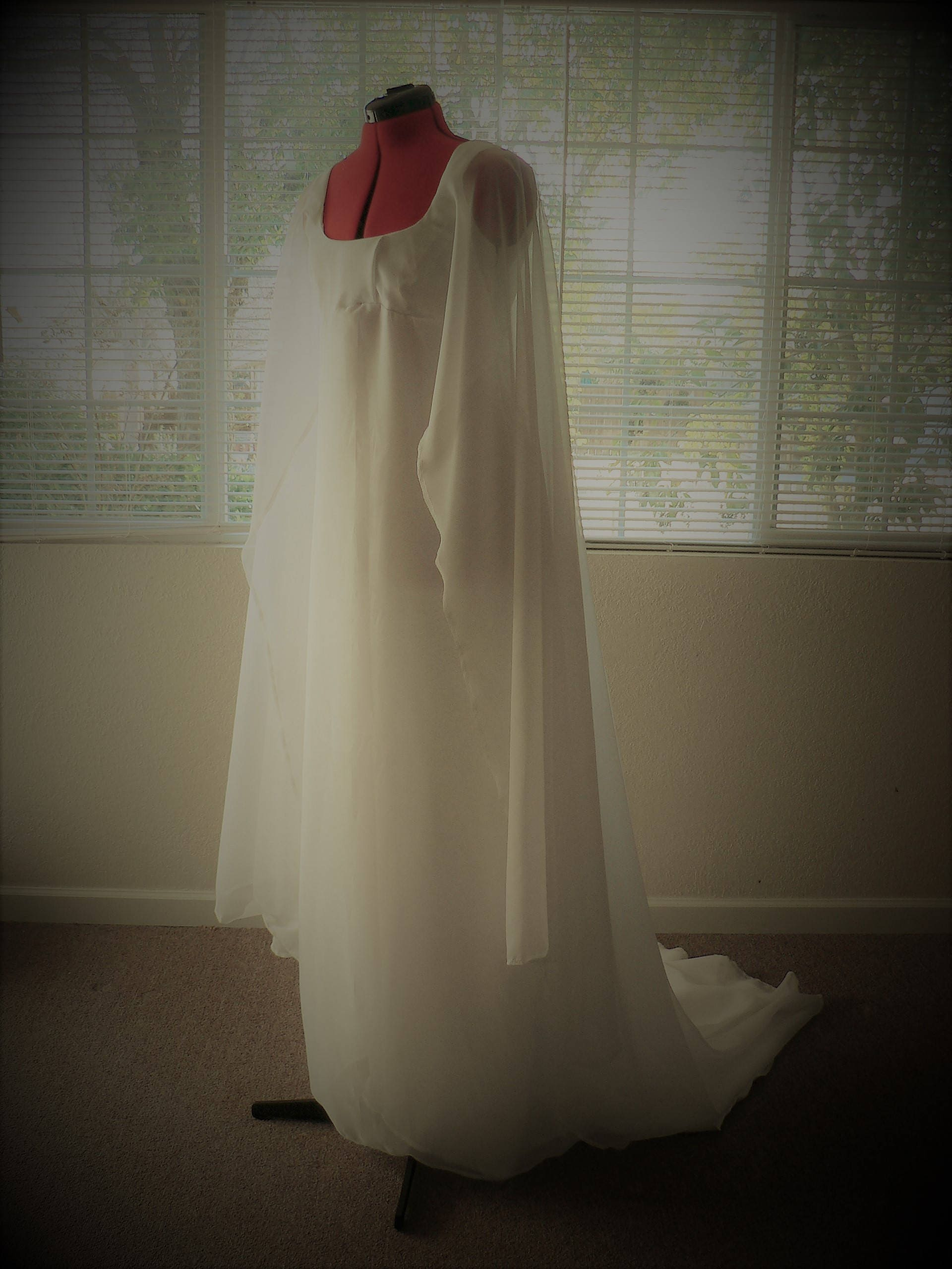 Princess Leia Ceremonial Gown Star Wars Inspired Wedding