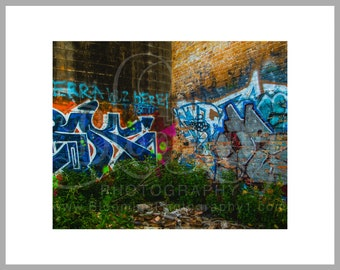 "8x10 Matted Print of ""Embracing Dilapidation 2"""