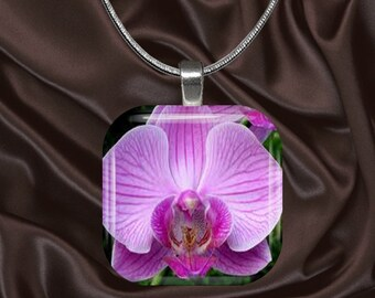 Pink Orchid Glass tile Pendant with chain(CuFl25.2)