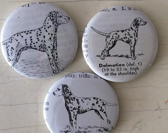 Dalmatian Vintage Dictionary Illustration Magnet Set of 3