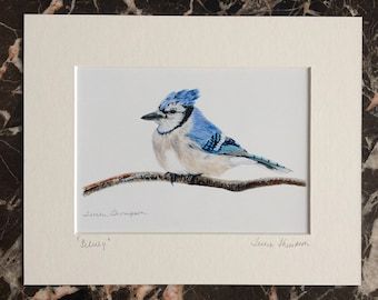 Blue Jay print of painting, blue jay art, bird home decor, blue jay wall art, bird art, bird print, wildlife art, nature art, nature print