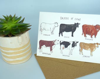 Breeds of Cows Greetings Card