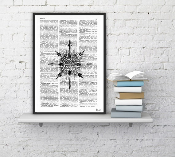 Dictionary Book print Spiky sea Shell skeleton illustration Vintage Design Print on Old Book wall art SEA093