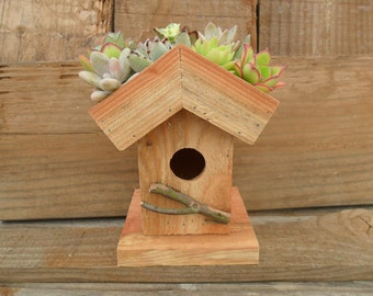 Living Roof Birdhouse Succulent Planter DIY Kit, Succulent Cuttings And Soil Included, Makes A Great Gift