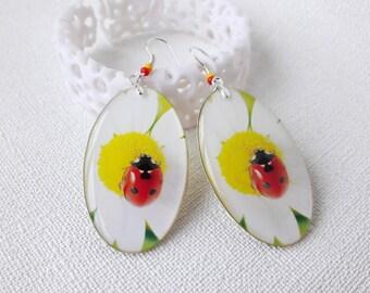 oval Ladybug earrings red Ladybird jewelry white flower chamomile spring earrings garden jewelry double sided earrings epoxy dangle everyday