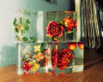 Paperweight 2X2 Cubes, preserved botanicals enclosed