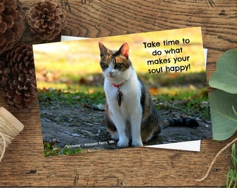 Happy photo greeting card, cats,