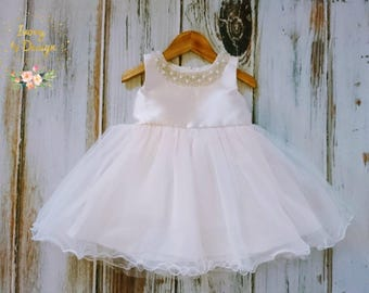 Gorgeous Sweet Light Blush Pink Baby Girls Fluffy Party dress Flower Girl dress Cake Smash weddings Special Occasion wear with a detachable