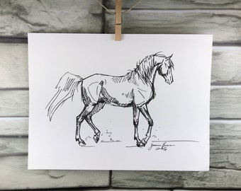 "Horse art original ""Arabian horse"" pen & ink sketch drawing"