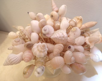 Wedding Toothpicks Beach Theme White Ivory Seashells Picks Sea Shell Shower  Summer Party Planning Summer Luau Design Inspirations