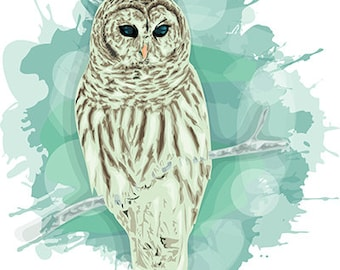 Winter Owl \ Eps \ Jpg files \ INSTANT DOWNLOAD \ Stylized art \ Graphic Design, Abstract Painting, Original Art, t shirt design