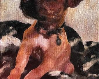 Boxer Puppy Portraits - Boxer Dog Portrait - Pet Portraits from Your Photo