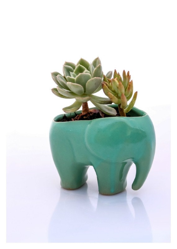 Elephant planter for succulents ceramic planters mothers day gift elephant decor gifts for mom desk plants housewarming gift