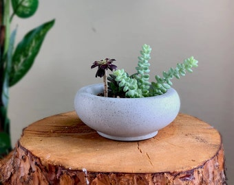 Concrete Planter - Sere