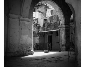 Sleeping Dog, Courtyard, Old Havana, Cuba Signed Art Print / Black And White  Cuban Architecture Photography / Havana Photo
